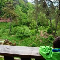 Eifelpark wolvendal