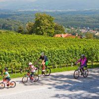 Fietsen in Slovenië