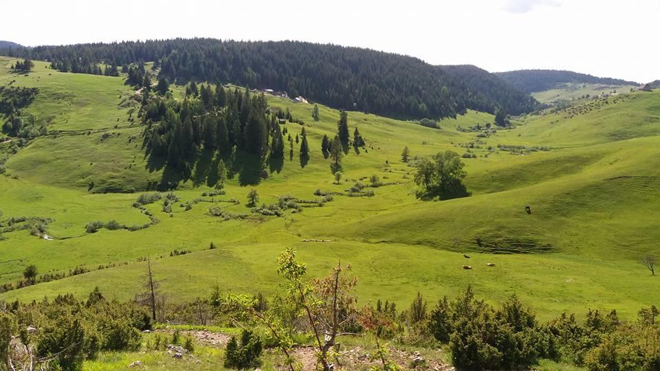 Bijelo Pole Montenegro